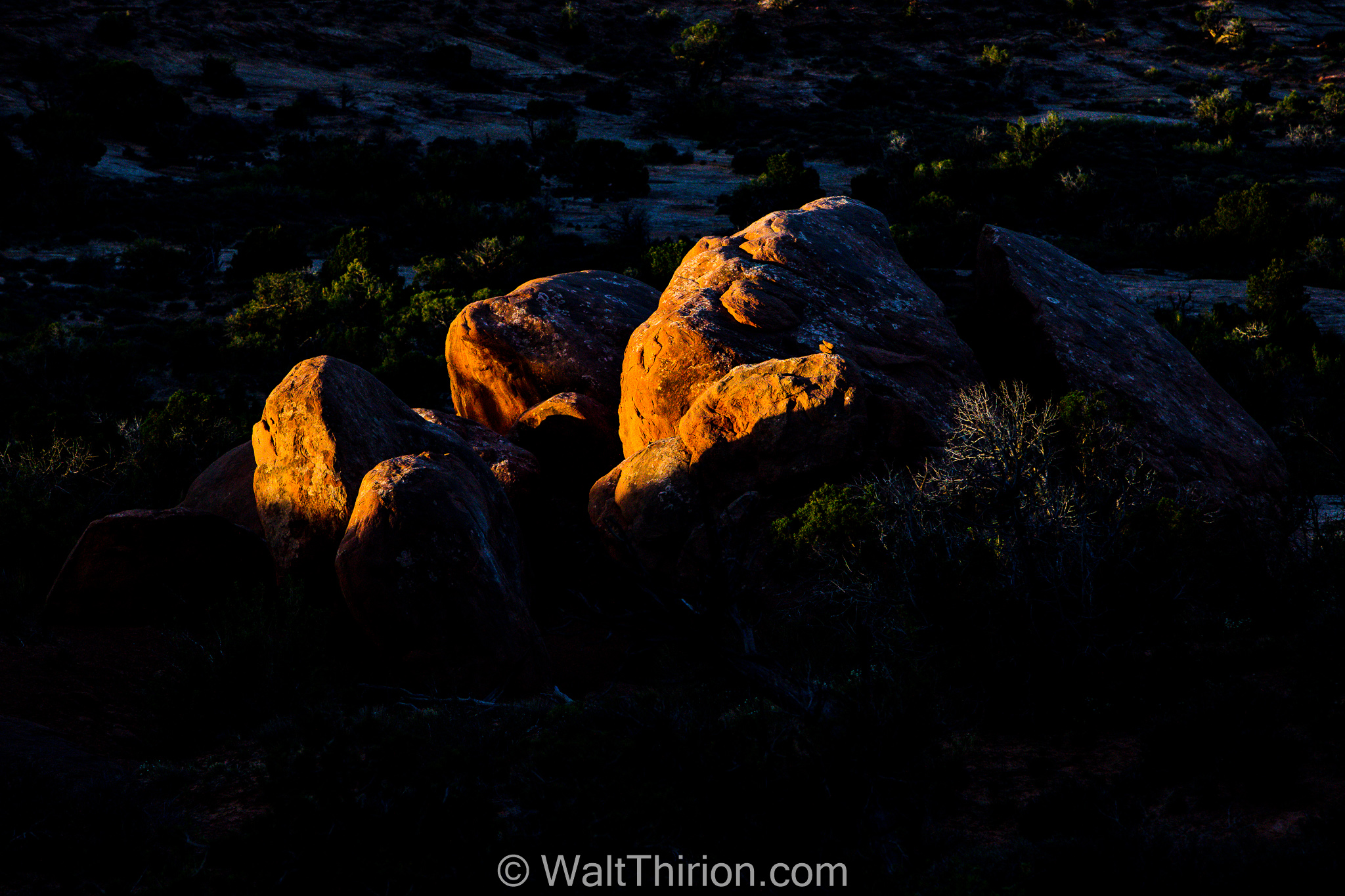 01-Walt Thirion - Arches